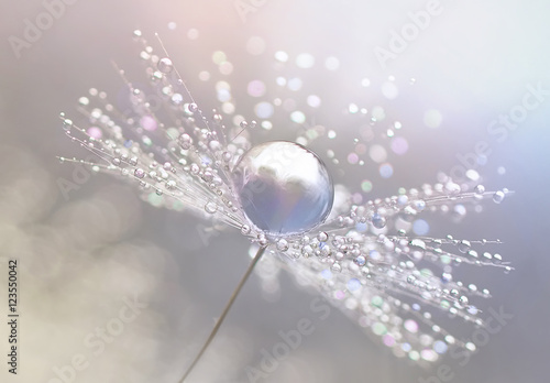 Staande foto Paardebloem Beautiful dew drops on a dandelion seed macro. Beautiful blue background. Large golden dew drops on a parachute dandelion. Soft dreamy tender artistic image form.
