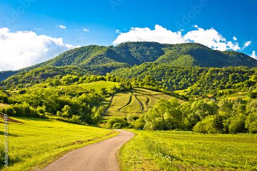Canvas Prints Hill Springtime landscape on Plesivica hills