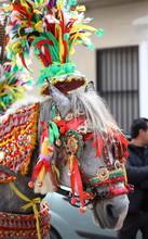 Cavallo Bardato A Festa