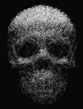 Vector Line Art. Skull Illustr...