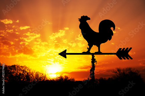 Spoed Foto op Canvas Zonsondergang Rooster weathervane against sunrise with bright colors in clouds, concept for early morning wake up
