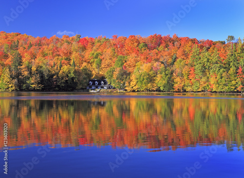 Canvas Prints Autumn Autumn colors on the lake, Mont Tremblant area, Quebec, Canada