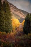 Fall in Tumwater Canyon