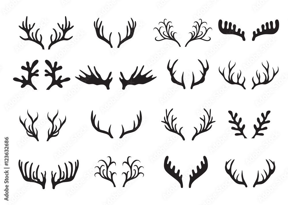 Fotografie, Obraz Deer antlers set isolated on white background.