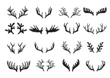 Deer Antlers Set Isolated On W...