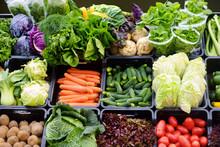 Fresh Organic Vegetables At Farmers Market