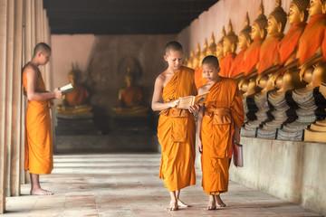 Novices at Ayutthaya Histor...