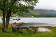 Scotland shoreline