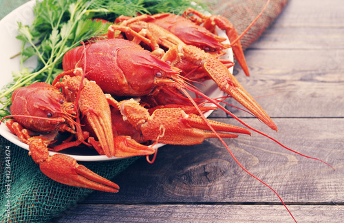 Poster Coquillage Boiled crayfish in a plate with parsley greens on a wooden background