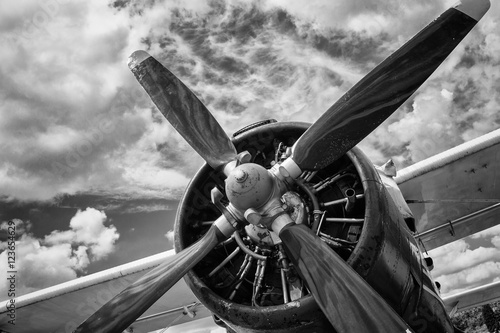 Fotografiet  Close up of old airplane in black and white