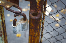 Old Gates With A Lock