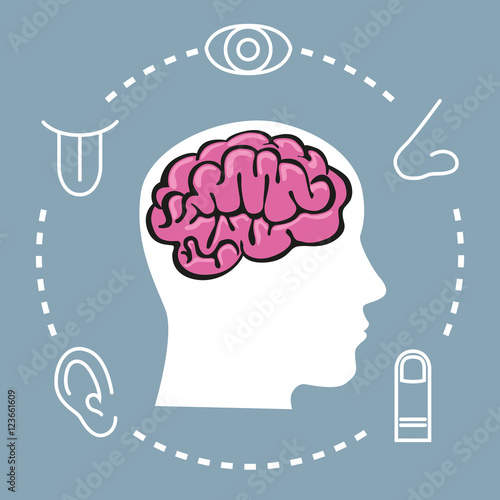 Foto  5 Sinne - Gehirn - Symbol