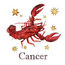 Zodiac Sign - Cancer.