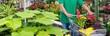 canvas print picture - Banner Kunde mit Einkaufswagen im Gartencenter