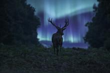 Stunning Landscape Image Of Re...