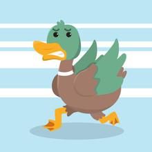 Duck Running Vector Illustration Design