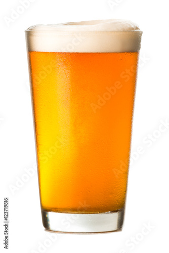 Pint of Amber Ale on White Poster