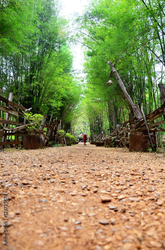 Papiers peints Jardin Walkway crushed stone with bamboo cave at the National Ethnic Cu
