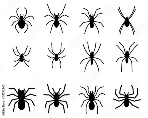 Fotografie, Obraz  Set of spider silhouette icon and symbol