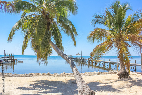 Valokuva  Typical landscape, of Key islands in Florida, United States, with palm trees, sea and wooden jetty in a sunny day