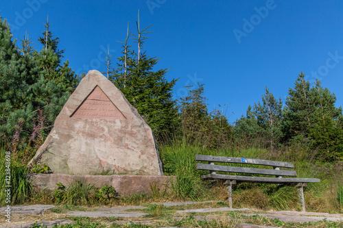 Fotografia  Denkmal Orkan Lothar; Nationalpark Schwarzwald, Sommer