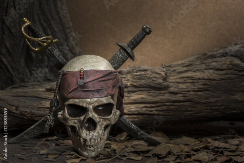 Fényképezés  Pirate skull with two swords
