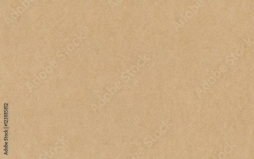 Paper texture cardboard background Canvas Print