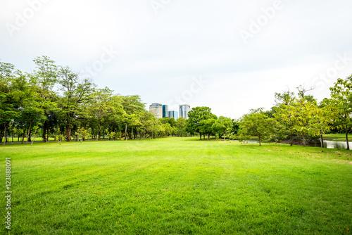 Poster Lime groen Public park landscape