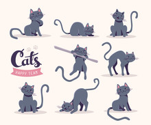 Vector Collection Of Illustration Of Cute Gray Cat In Various Po