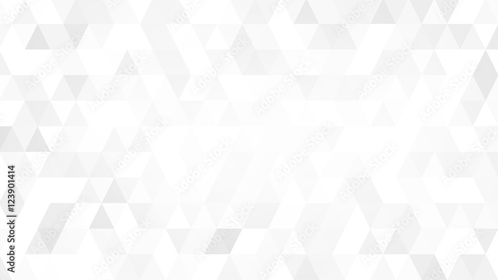 Fototapeta Gray White Polygon Mosaic Background, business and corporate background.