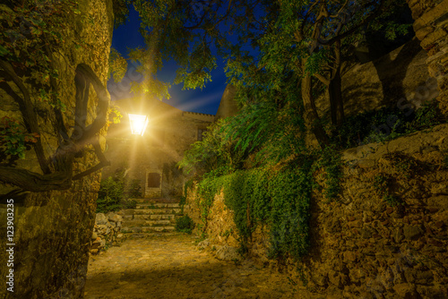 Foto op Canvas Tuin The beautiful Byzantine castle town of Monemvasia