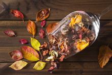 Autumn Leaves In A Wine Glass ...