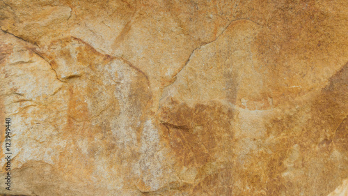 Stone texture background Canvas Print