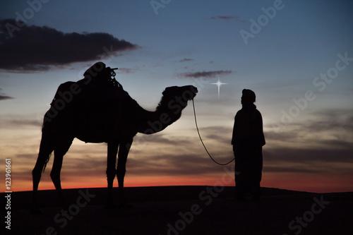 Fotografija  Africa, North Africa, Tafilalet, Erfoud, Merzouga, Erg Chebbi, Dromedary (Camelus dromedarius) camel with Tuareg man, at sunset