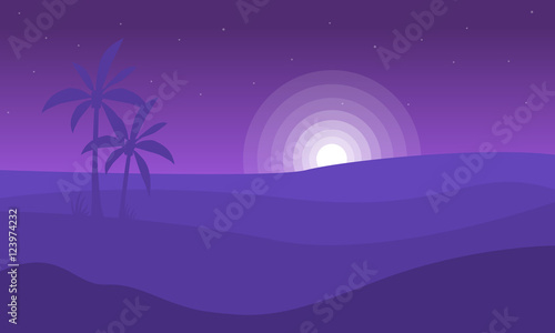 Silhouette of desert and moon landscape