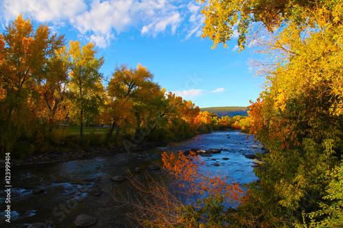 Keuken foto achterwand Baksteen Animus River