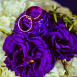 canvas print picture - Golden rings lie on the tender violet roses