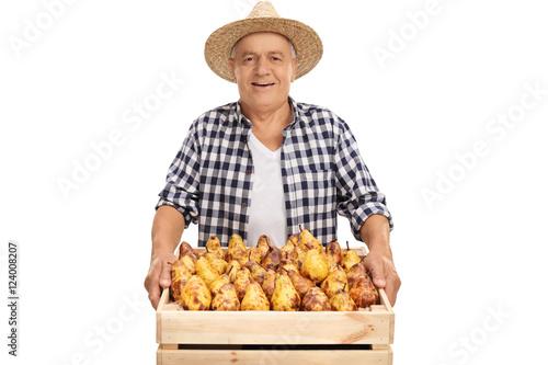 Joyful senior farmer holding a crate full of pears