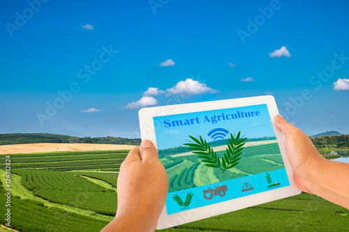 Smart Agriculture and Internet of things in agriculture concept
