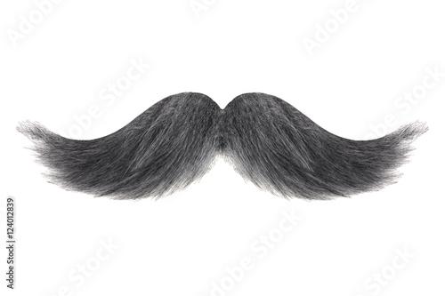 Obraz Curly black with grey moustache isolated on white - fototapety do salonu