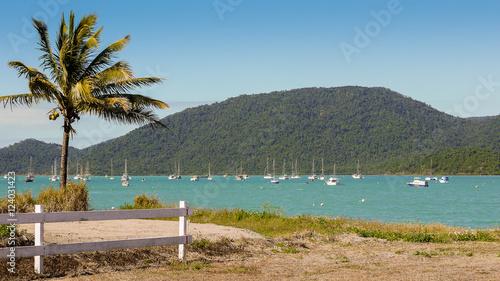 Photo Bucht in Airlie Beach, Queensland in Australien