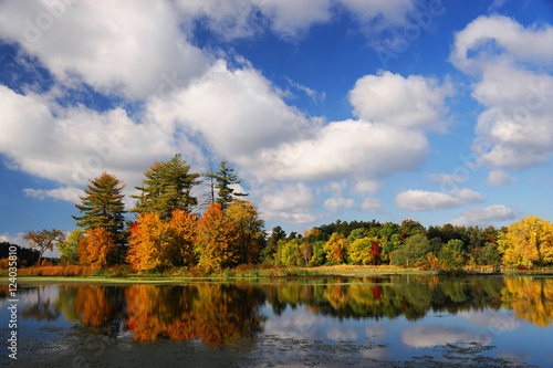 Staande foto Herfst autumn colorful trees reflecting in tranquil lake under sky