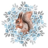 Squirrel and blue flowers. Watercolor illustration. Isolated on white - 124050097