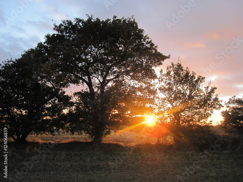 Fotografie, Tablou  A Country Sunset