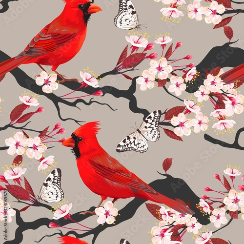 Photographie Seamless cardinal and blooming cherry