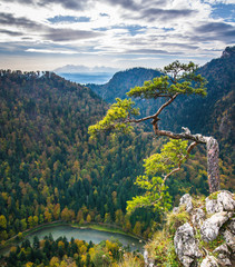Fototapeta Optyczne powiększenie View from Sokolica in Pieniny Mountains with Tatra Mountains, Season Autumn