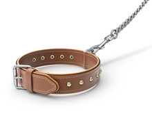 Leather Dog Collar With Trigge...