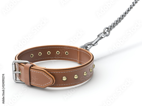 Valokuva  Leather dog collar with trigger hook and chain