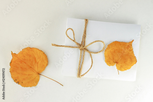 autumn theme stationery paper note with twine bow dried yellow