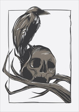 Illustration Crow Skull